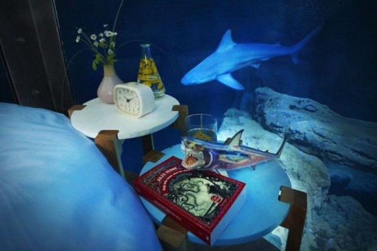 the-room-even-comes-with-marine-themed-literature-theres-a-copy-of-le-serpent-de-mer-by-jules-verne-for-bedtime-reading-1024x683 (1)